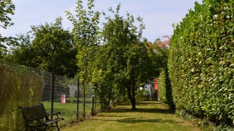 Vert Chasseur/Bois de la Cambre, superbe appartement/studio de 40m² habitables + jardin avec accès direct au Bois de la Cambre.